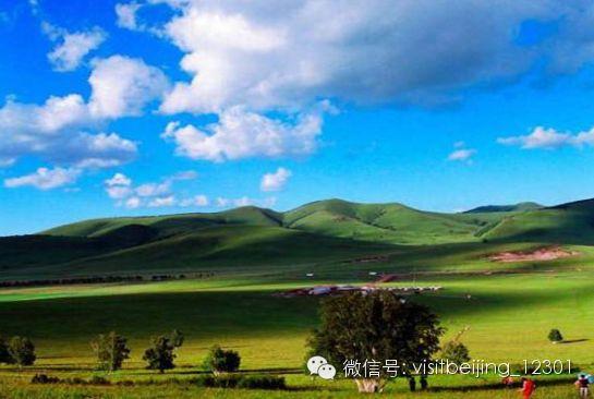 北京春季周边自驾游 看京郊美丽的草原世界