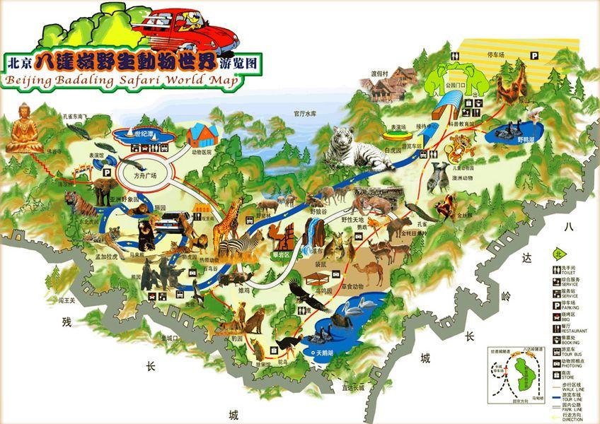 北京八达岭野生动物园攻略(门票地址+游玩项目+自驾游)