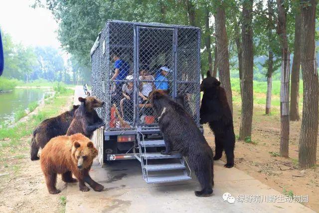 北京野生动物园攻略(门票 展区 交通)