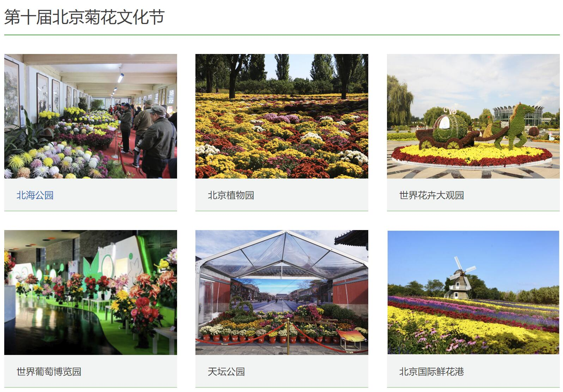 2018北边京菊花展地址在哪里?六父亲景区菊展开展春天季赐予花之旅