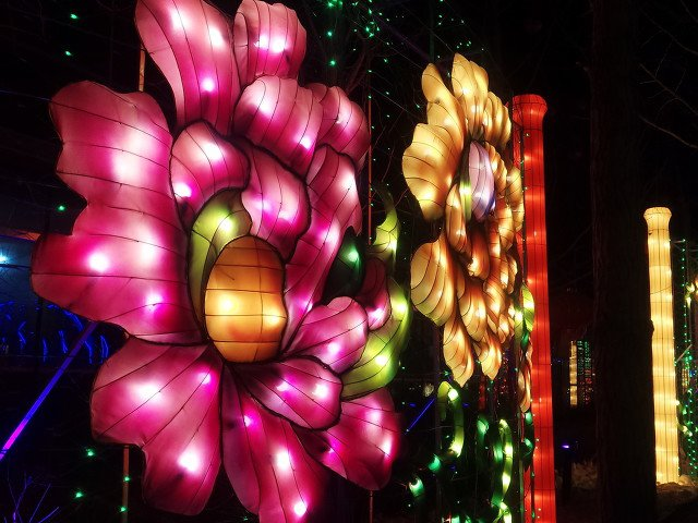 2020北京南宫新年灯光狂欢夜时间安排一览