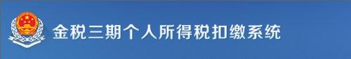 北京个人所得税申报