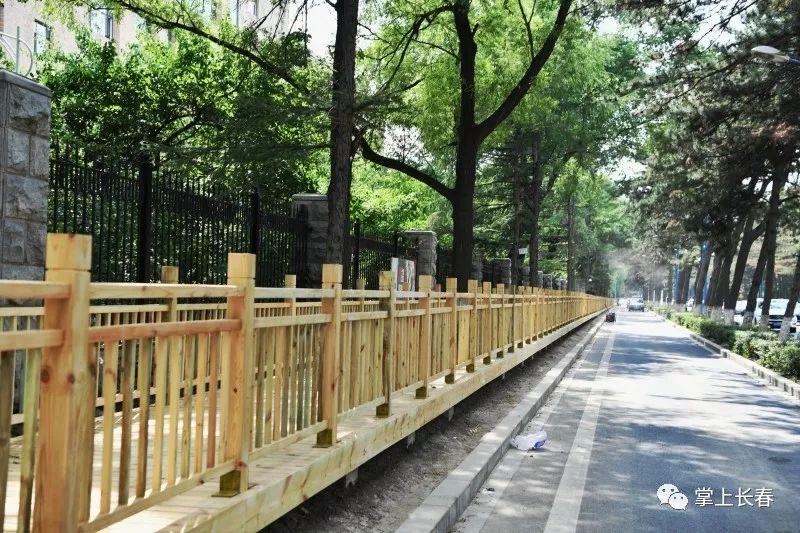 长春南湖大路人民大街至湖滨街段的木栈道今日投入使用