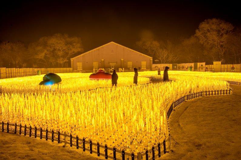 2020长春水文化生态园灯光秀