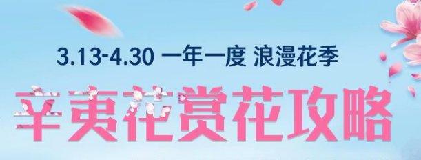 2020九皇山第八届辛夷花节时间 活动