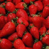 重慶摘草莓