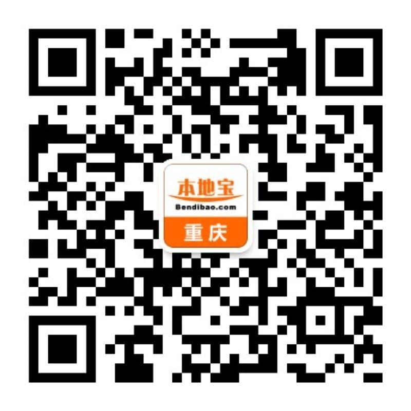 重庆医疗保险查询指南