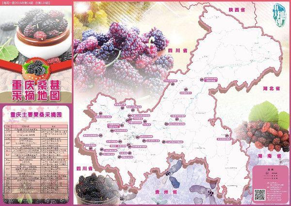 《重庆桑葚采摘地图》