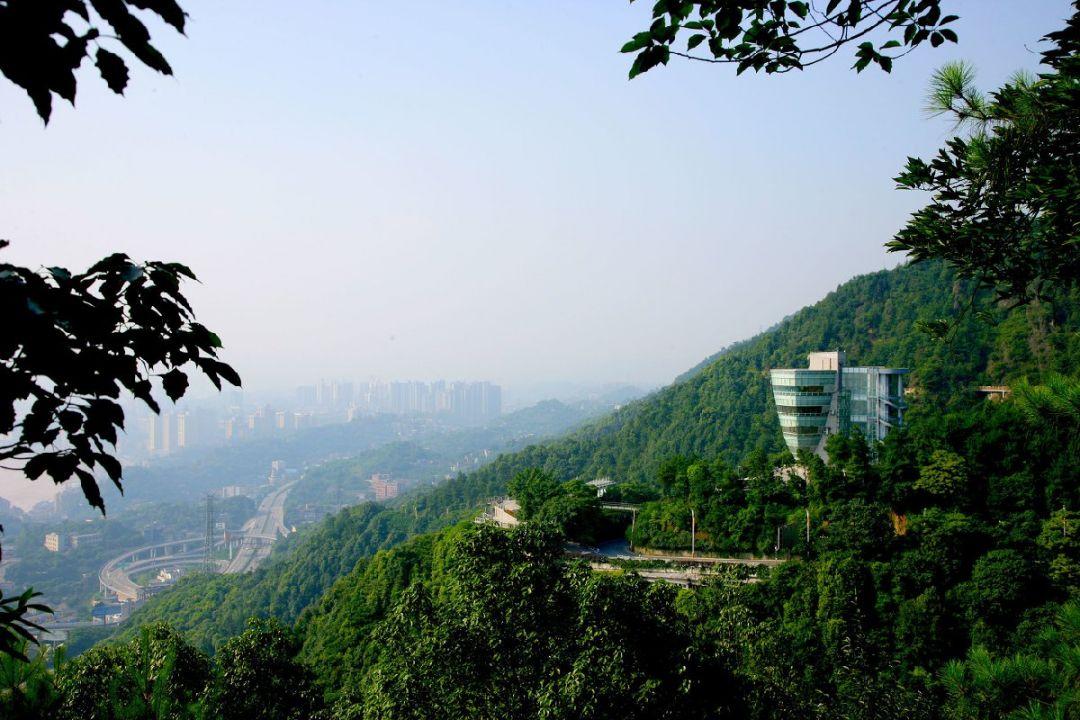 重慶3日游攻略(美食+景點)