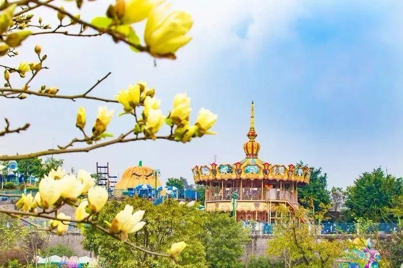 2019重庆乐和乐都主题乐园教师节特惠门票购买方式