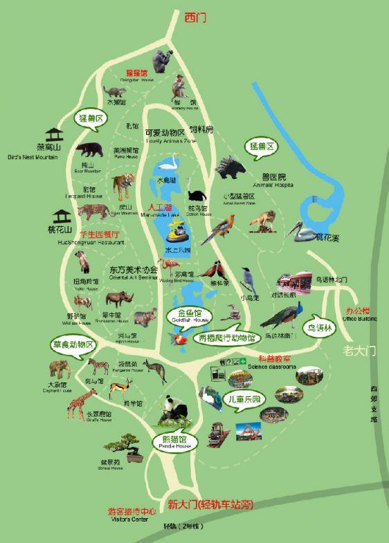 重庆动物园游玩攻略(门票、园区导览、交通)