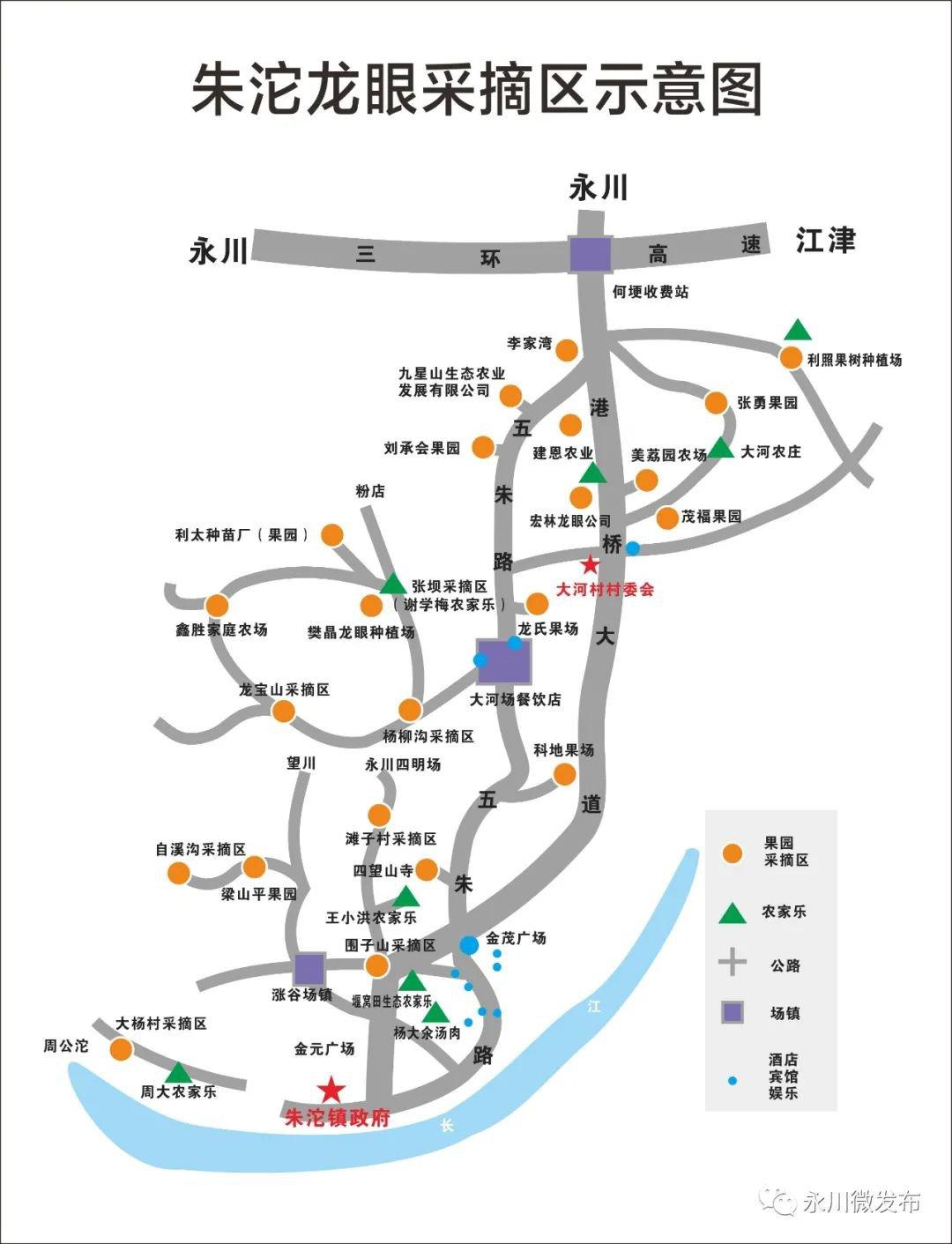 重庆永川朱沱镇龙眼基地分布一览