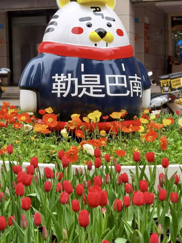 2021重慶巴南郁金香花展時間、地點、門票