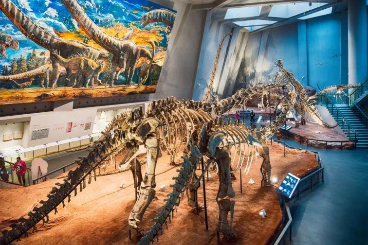 重庆最全博物馆参观攻略,赶紧收藏!_重庆旅游攻略