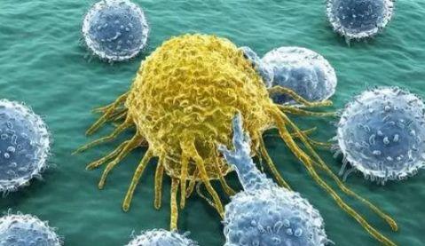 长沙可报名免费筛查5癌