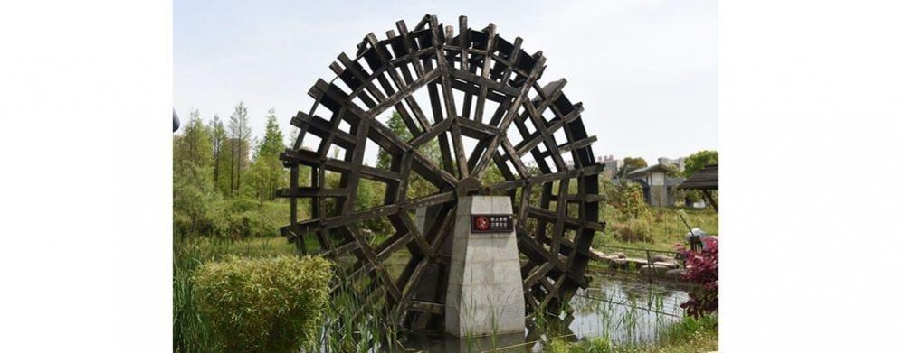 洋湖湿地公园游玩攻略