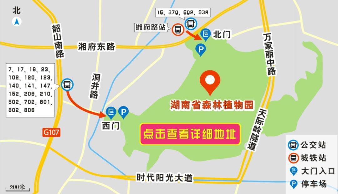 湖南省森林植物园在哪?怎么去?