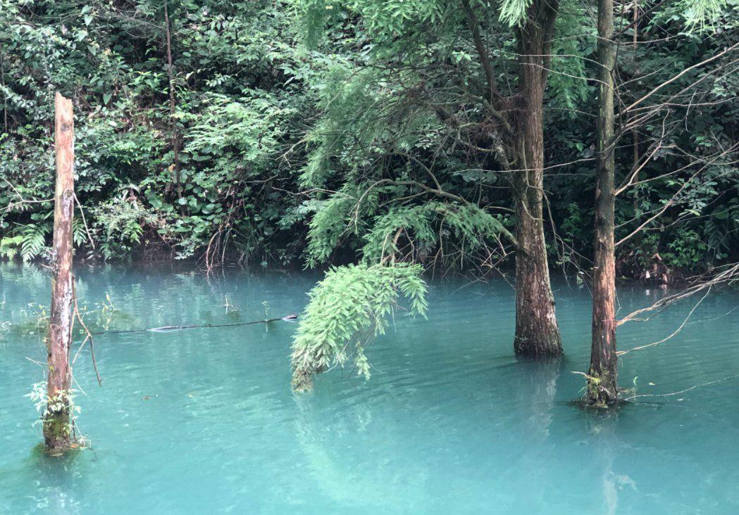 yabo网页版首页大山冲forest公园门票多少钱?