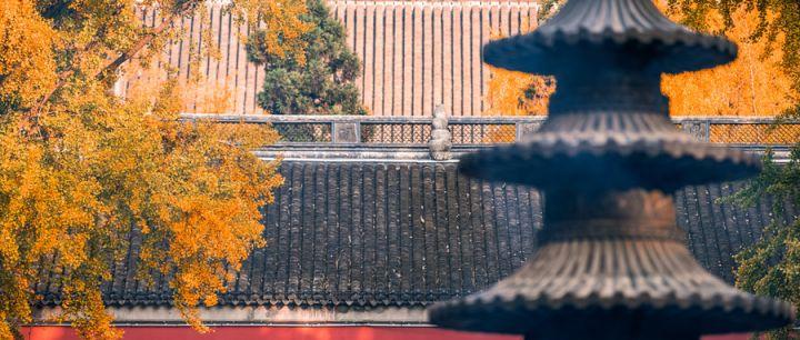 2021南京免費開放日景點名單