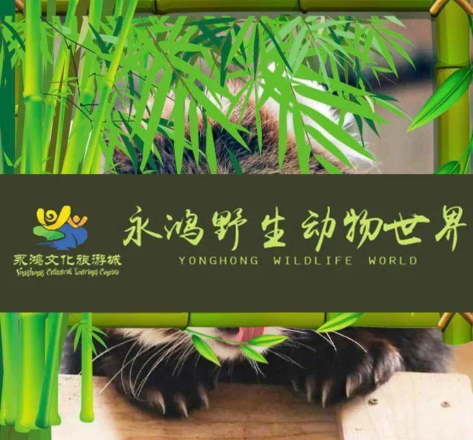 2020福州永鸿野生动物世界国庆活动(时间 详情)