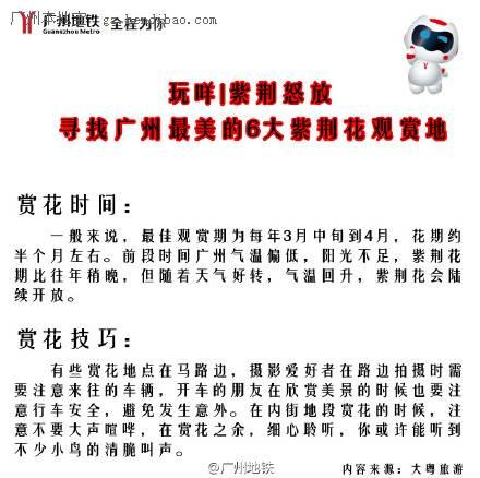 2015年广州赏紫荆花好去处盘点 广州6个紫荆花集中点