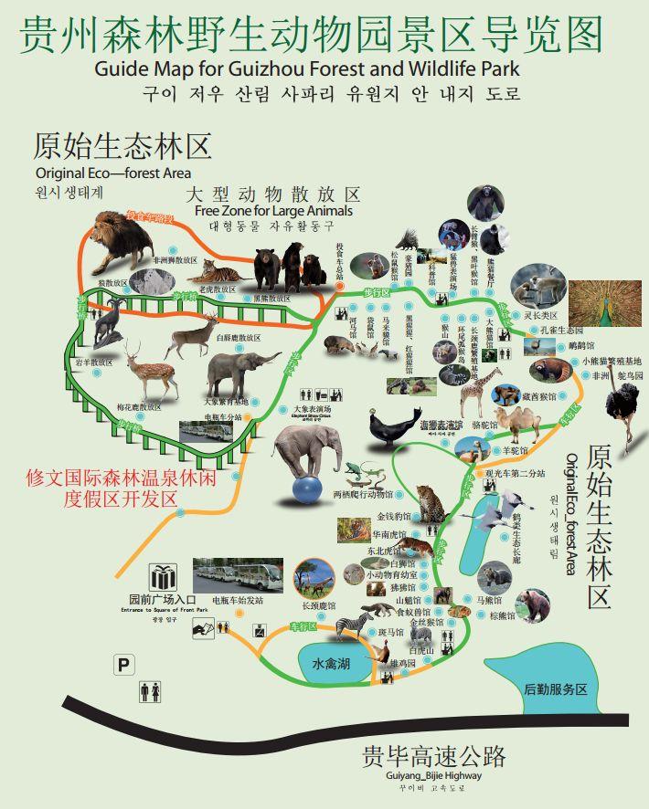 贵阳森林野生动物园怎么样?(景区介绍)