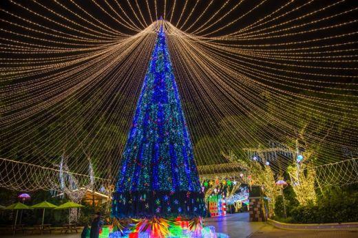 """长隆""""舞动流光""""欢乐圣诞 门票单人138双人248"""