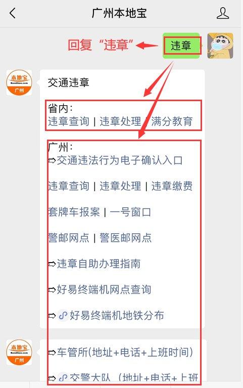 广州交通违章查询