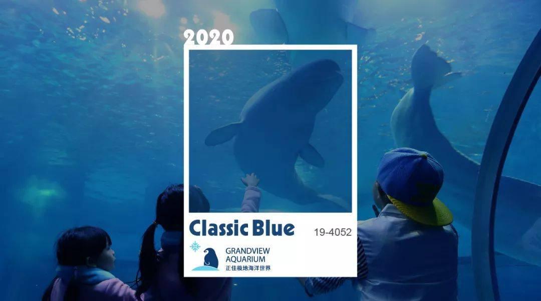 2020年春节正佳极地海洋世界有什么活动?