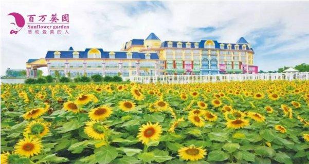 2020广州百万葵园对全国医护人员免费开放