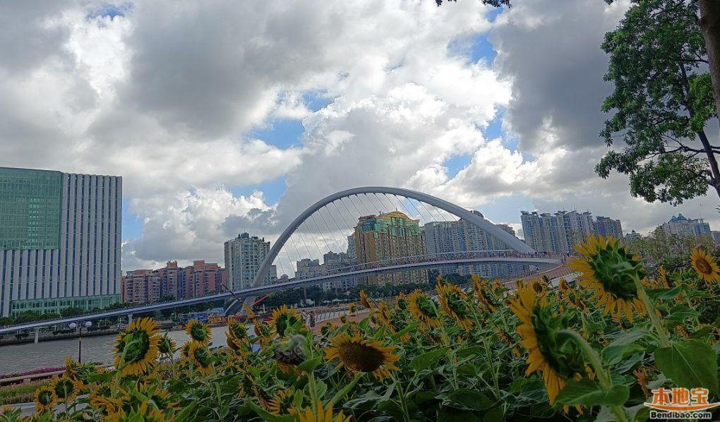 广州海心桥图片(现场实拍组图)