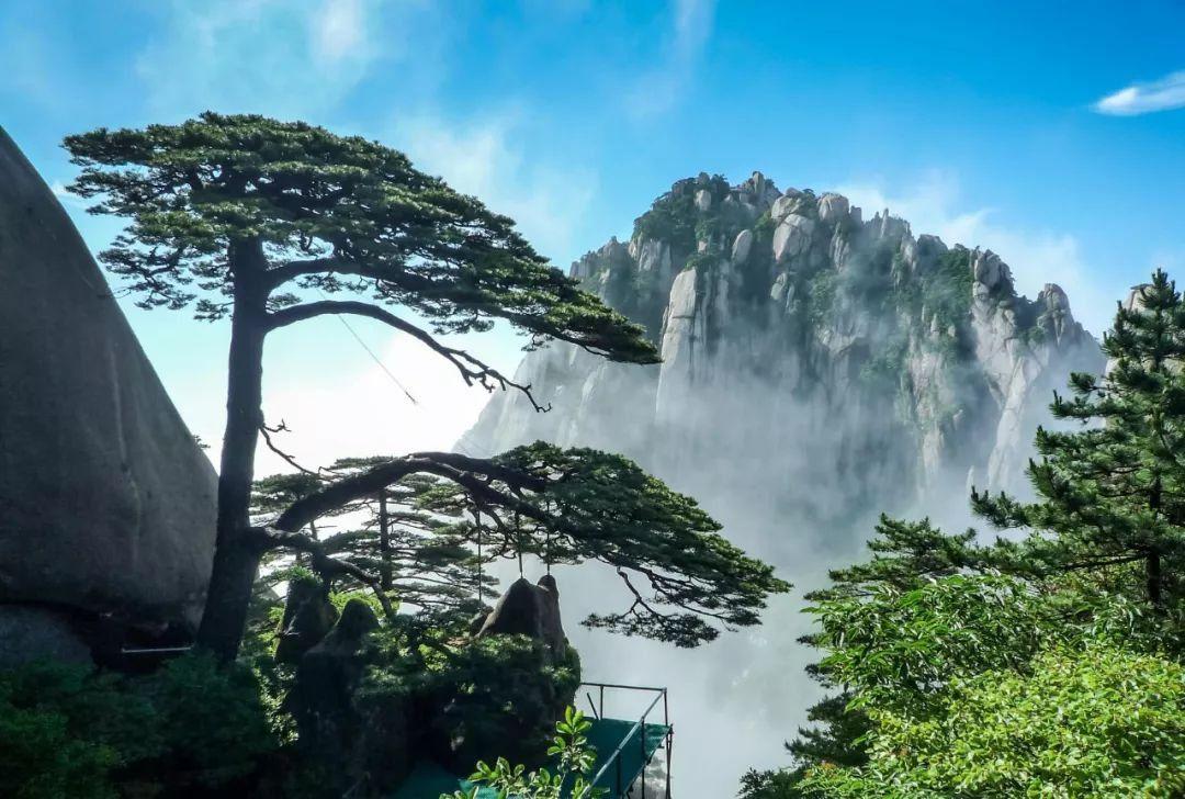 2020黄山风景区门票是多少钱?