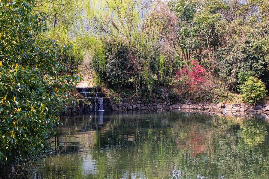 2020杭州西湖龙坞茶村哪些美食店做优惠?