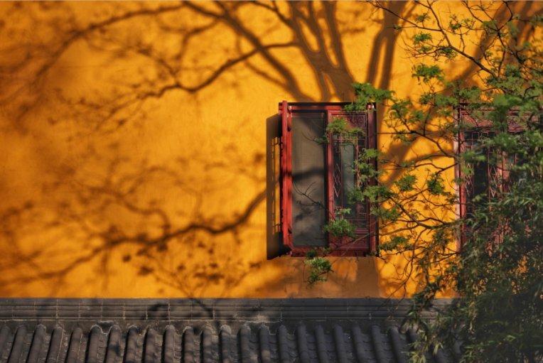 2020杭州靈隱寺需要預約嗎