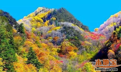 理县米亚罗风景区