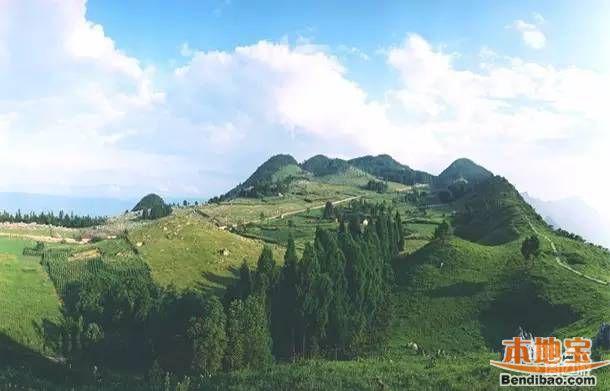 重庆带父母必去景点推荐 勒些森林公园号称