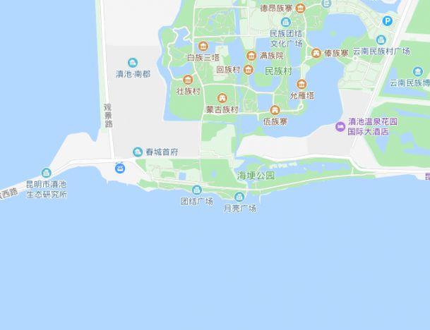 2019昆明国庆节有海鸥吗?