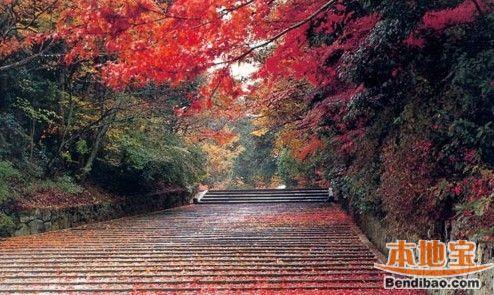 南京爬山哪些地方比较好?秋季爬山好去处推荐