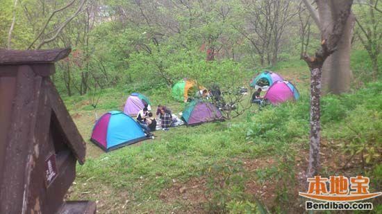 南京适合露营的地方有哪些