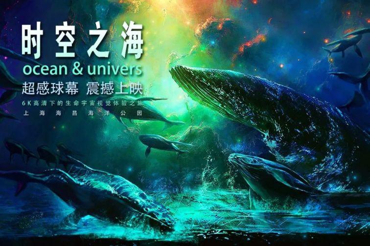 上海海昌海洋公园大揭秘 你可以这样玩 (图)