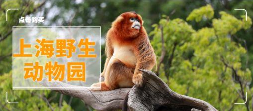 上海野生动物园门票