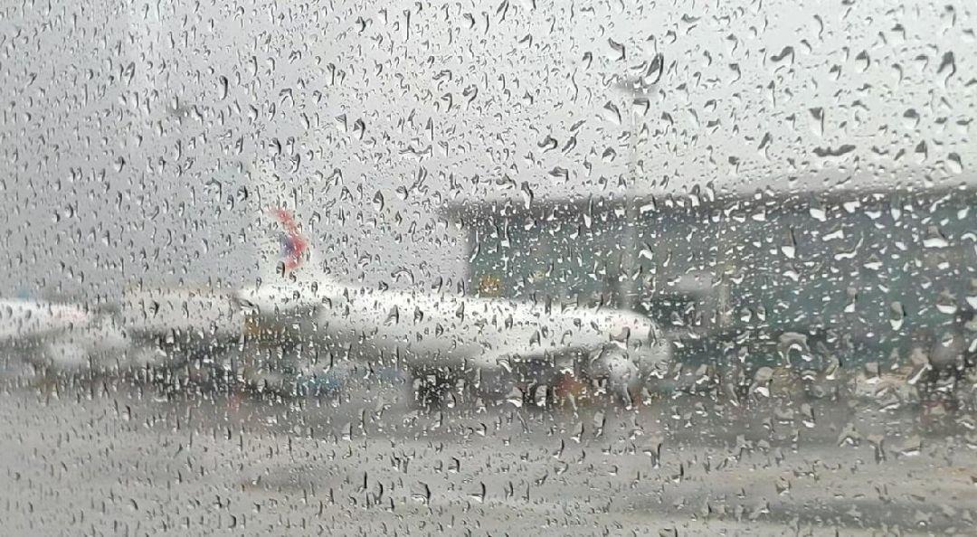 臺風影響上海航班取消最新消息(更新中)