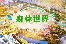 苏州乐园森林世界游玩