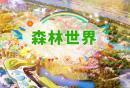 蘇州樂園森林世界游玩
