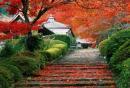 长沙南郊公园赏红叶攻