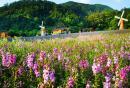 盘龙峡生态旅游区旅游
