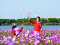 2017年春节广州怎么玩?来海珠湖公园赏