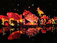 2018广州越秀公园灯会时间、门票及活动