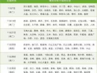 11月7日起广州26个地铁站升级安检 到30