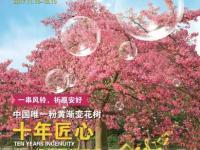 2017双十一广州百万葵园门票五折(含抢票